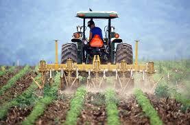 créer une entreprise en agriculture