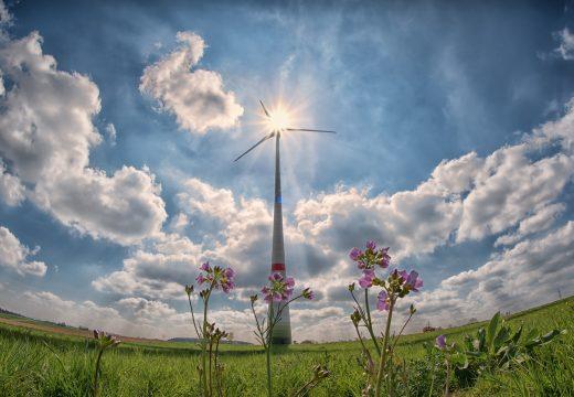 Tour d'horizon et chiffres du marché français des énergies renouvelables