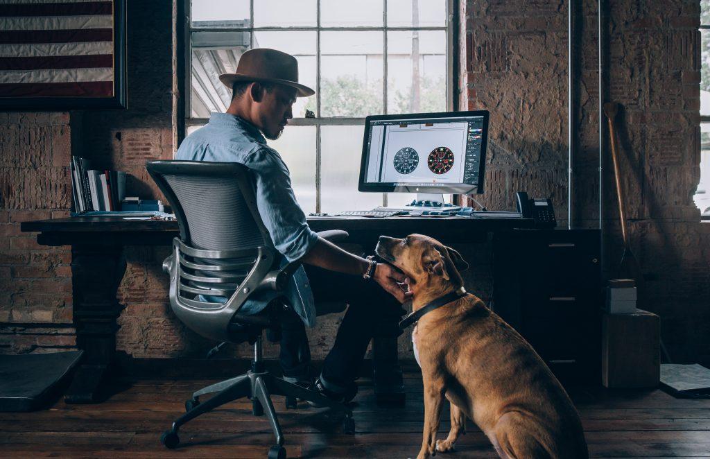 Un chien au travail